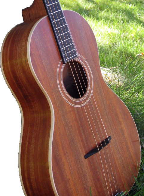 Tenor Guitar JD2